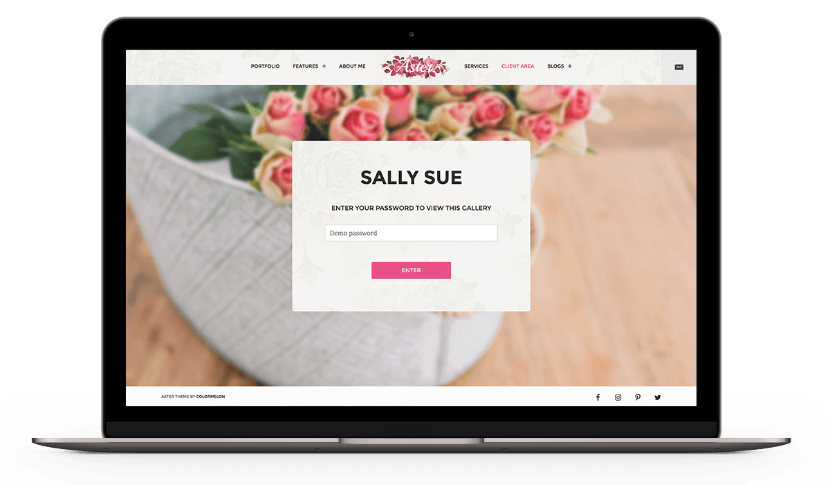 Aster Photography WordPress theme with password protected client area