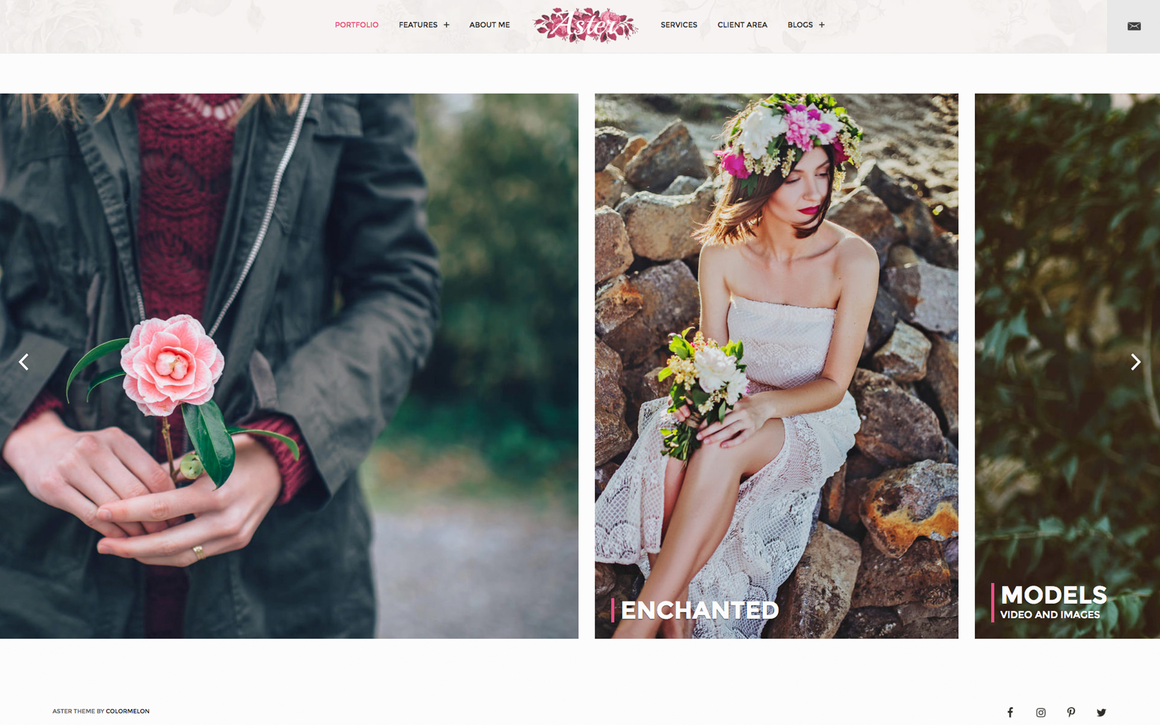 Horizontal Photography Theme called Aster