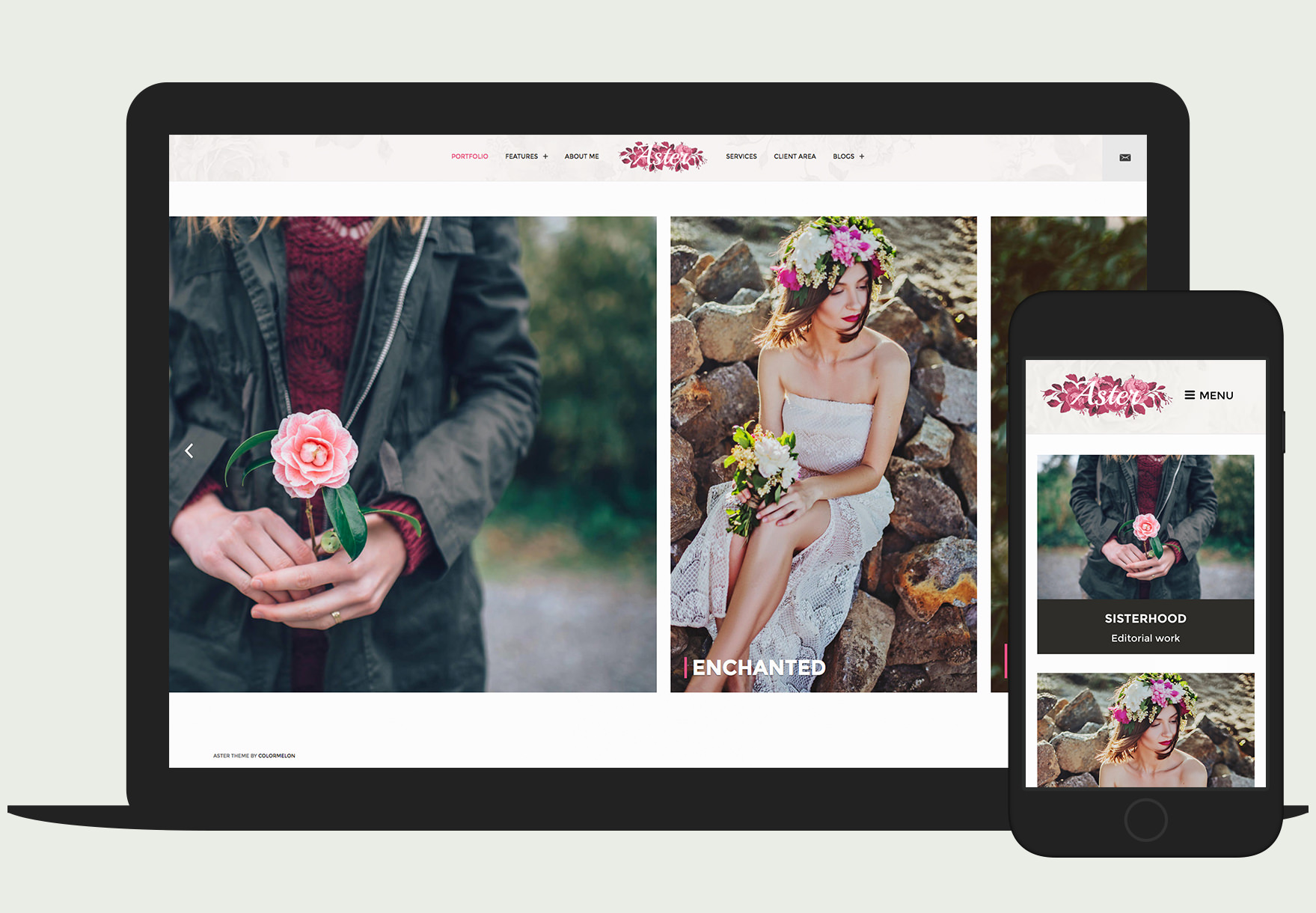 Aster - Responsive photography Wordpress theme