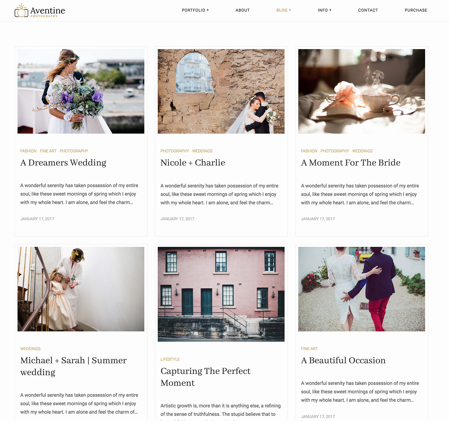 Aventine Wedding Photography WordPress Theme - masonry blog layout