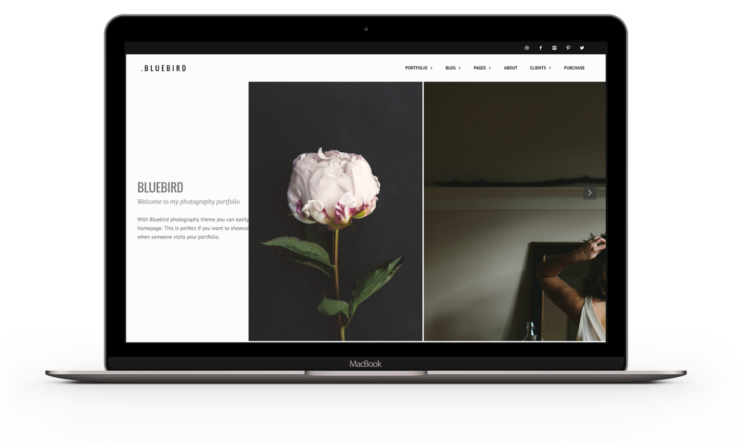 Bluebird - WordPress Portfolio theme for Photographers