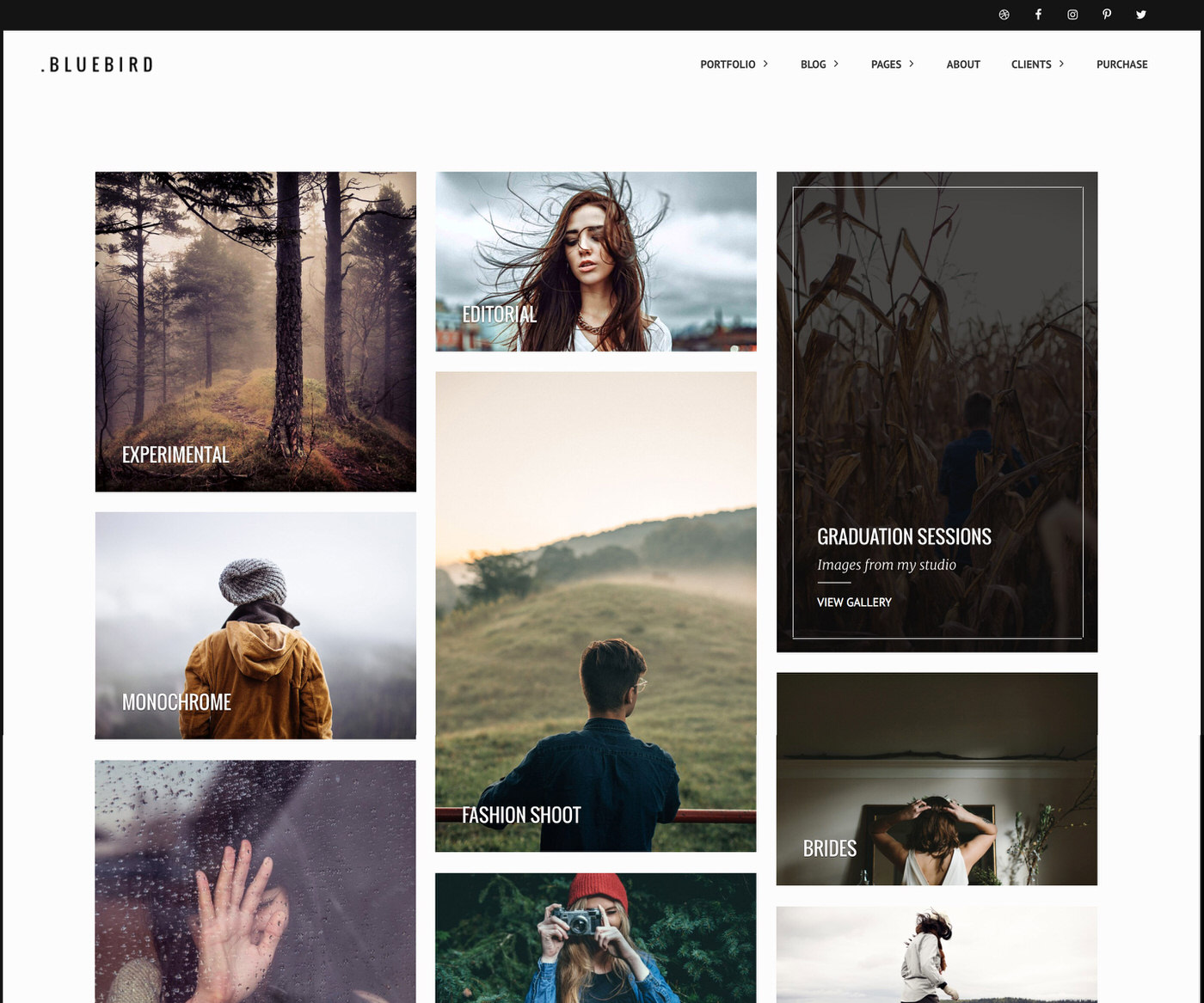 Bluebird photography WordPress theme with masonry layout