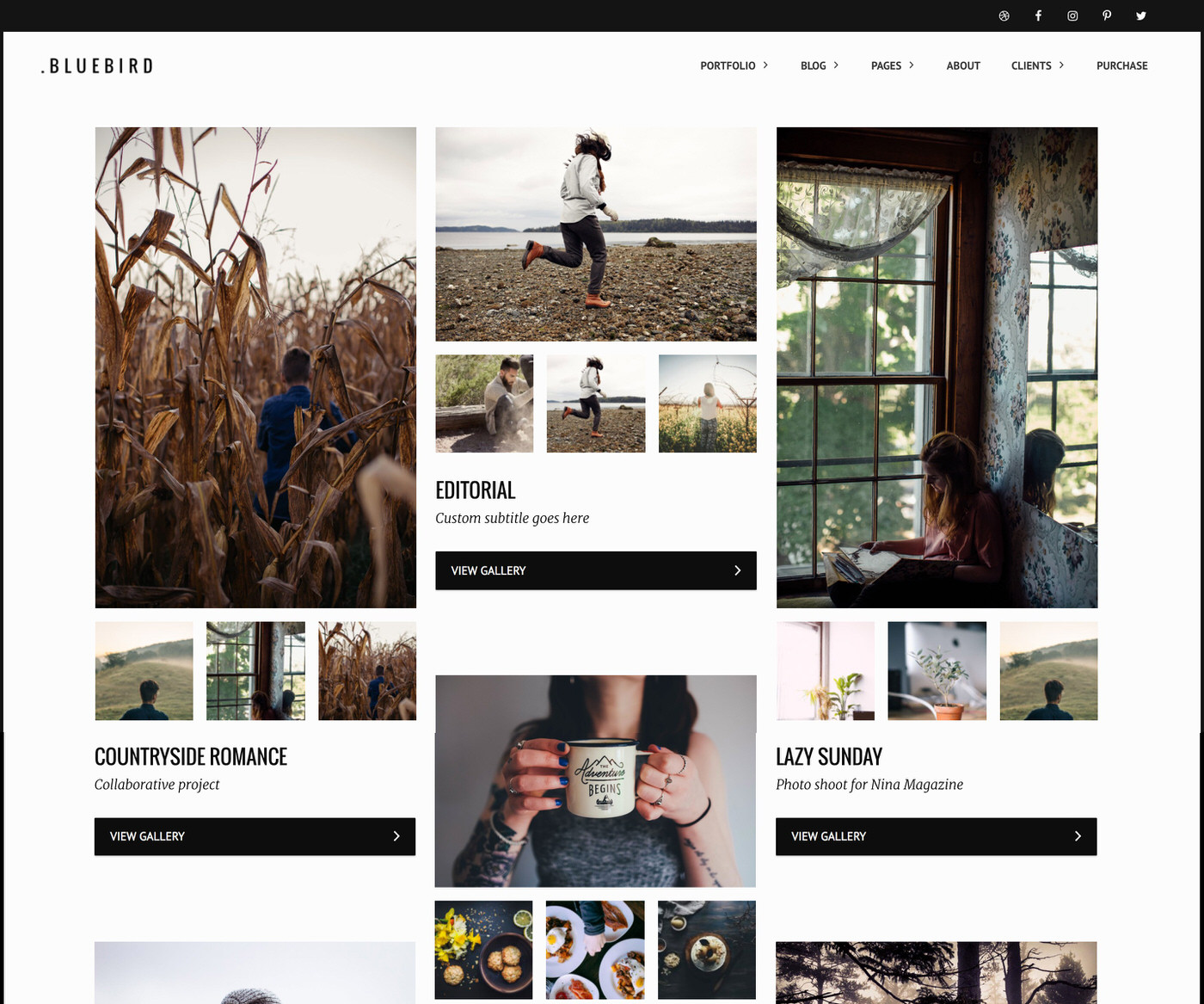 Bluebird photography WordPress theme with masonry thumbnail layout