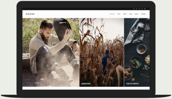 Bluebird Photography - Fullscreen Horizontally Scrolling Portfolio Theme