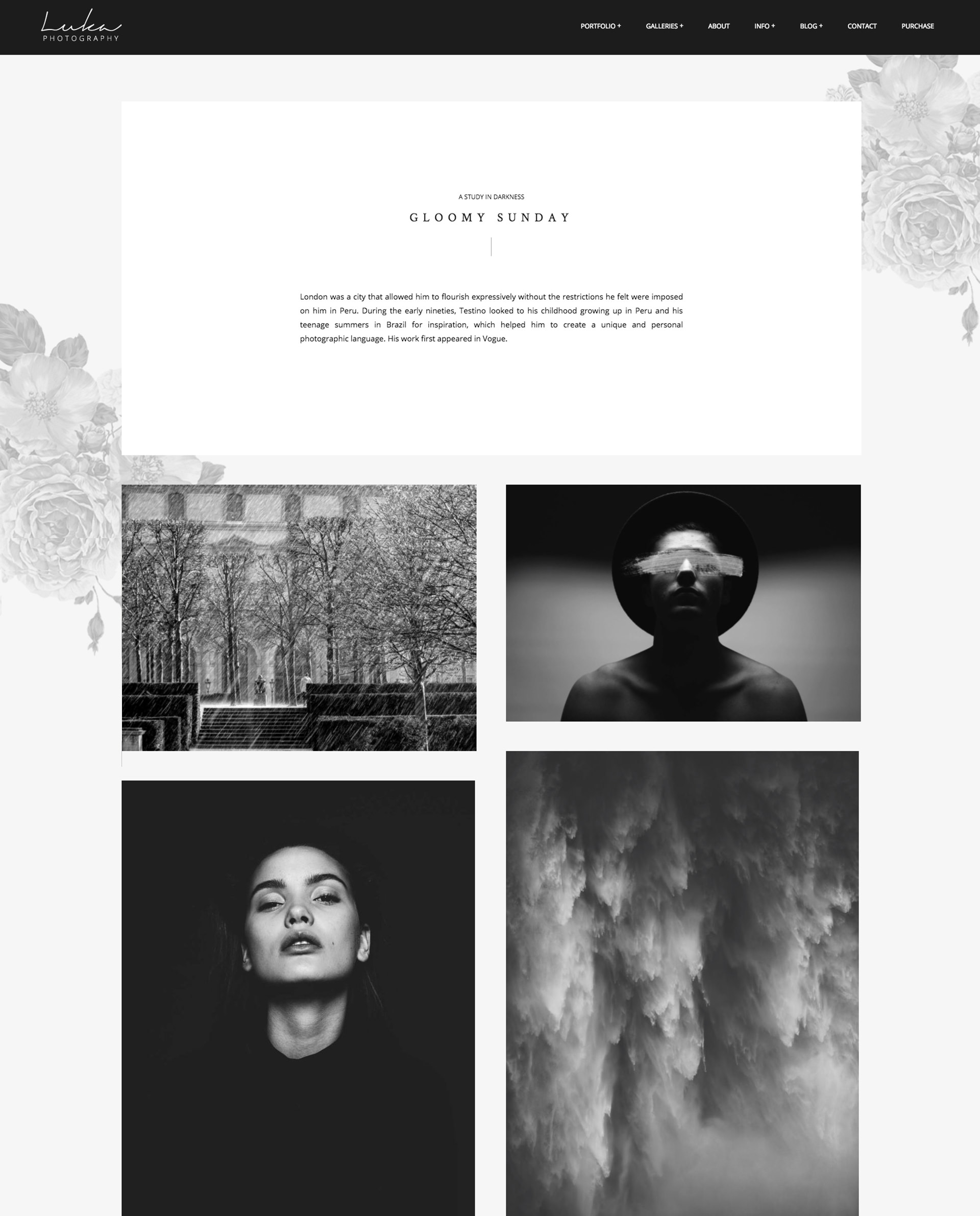 Luka Portfolio Theme for Photographers - masonry gallery layout with text