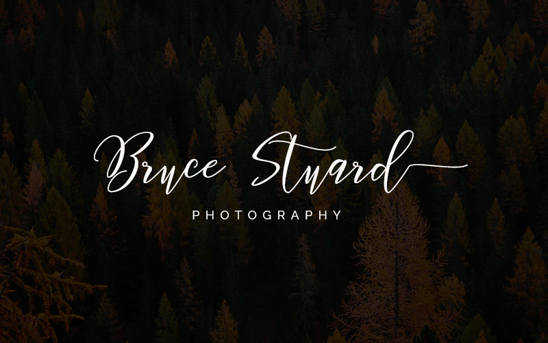 25 Free Signature Fonts for Logo Design | Colormelon