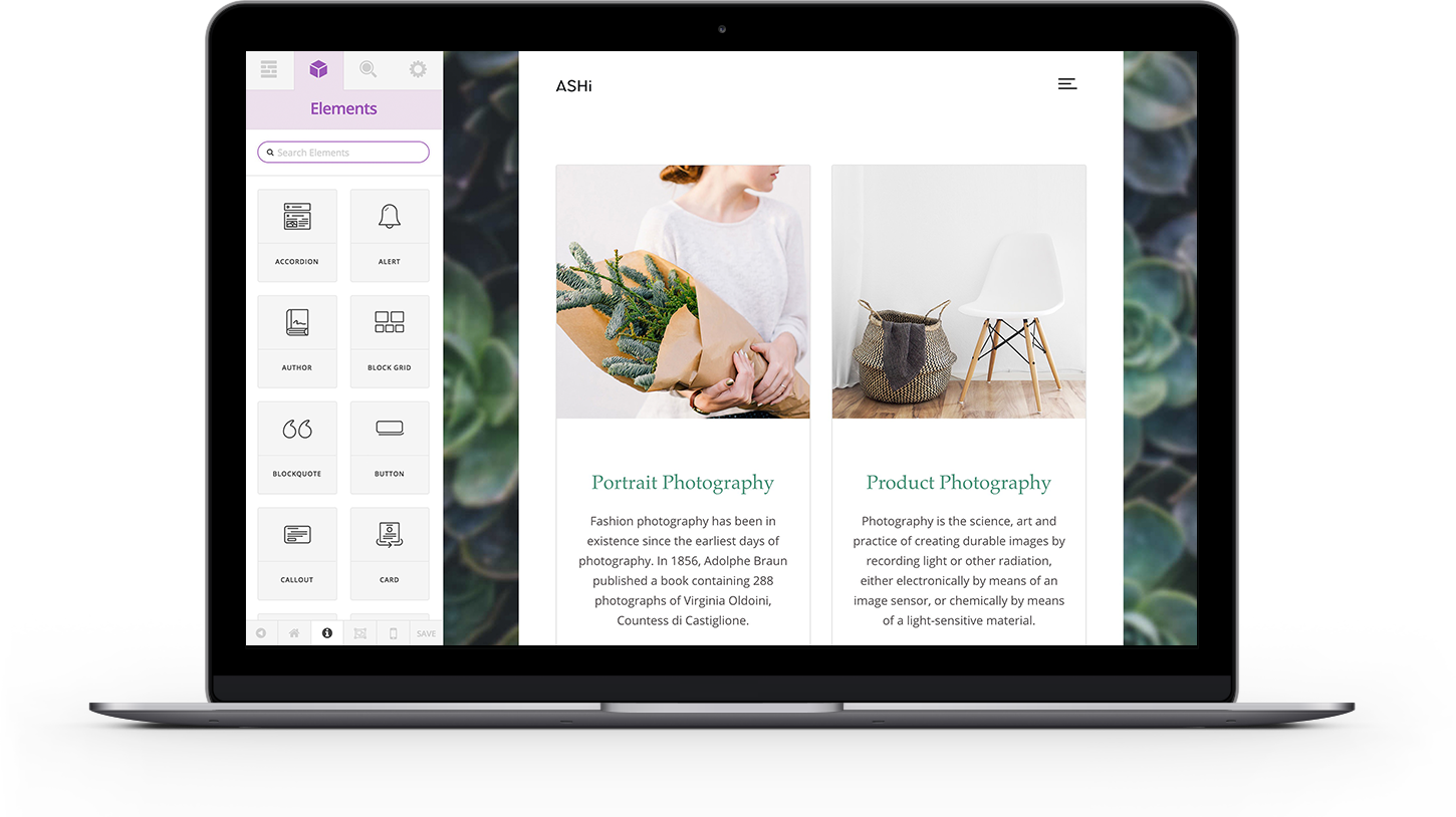 Ashi WordPress theme with Cornerstone page buillder