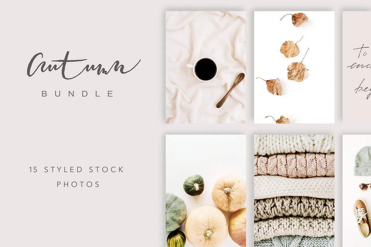 Autumn or fall themed styled stock photography.