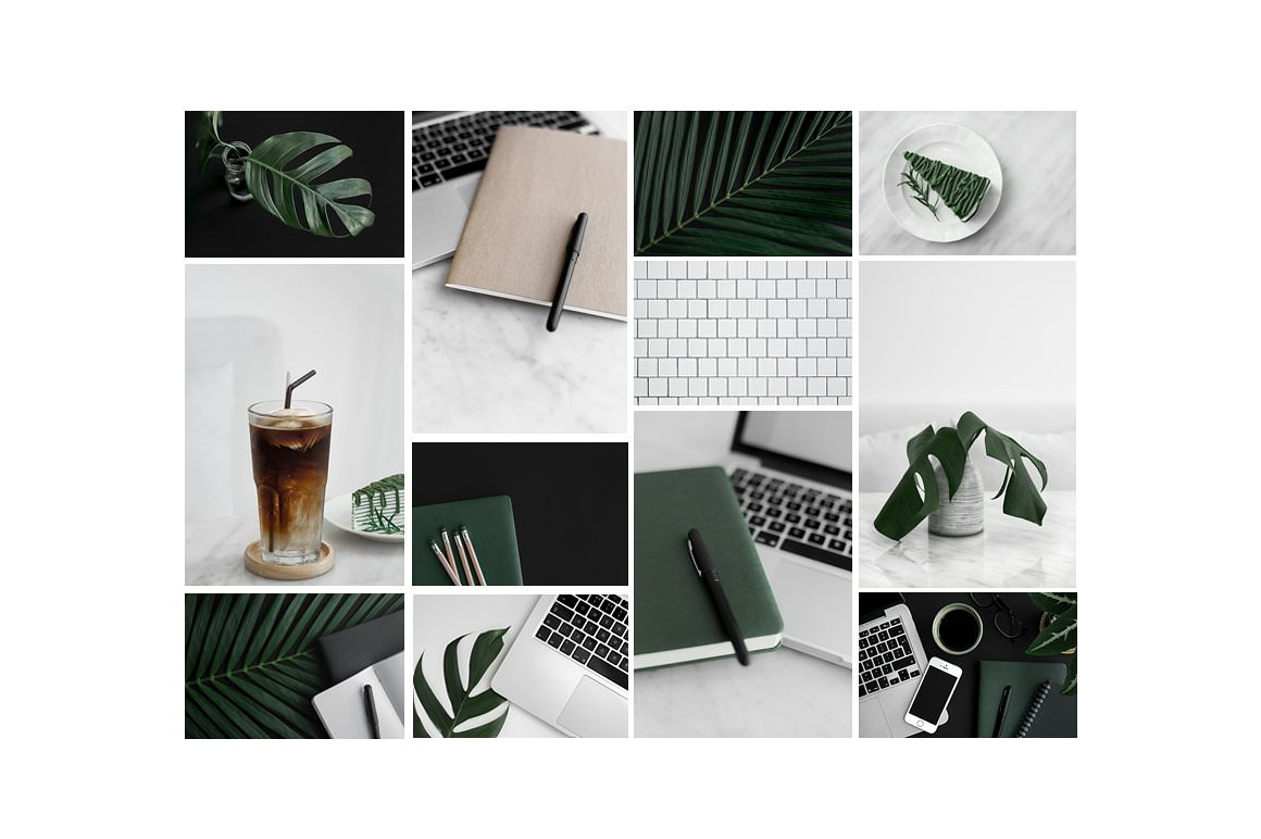 Black and white styled stock photos with rich green and neutral accents. Stock photography for entrepreneurs.