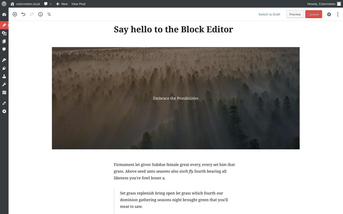 WordPress Koji theme and block editor for WordPress