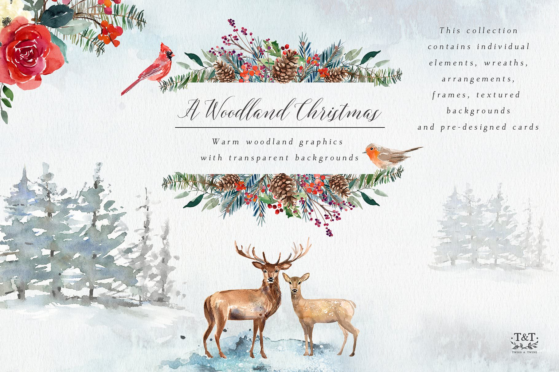 Woodland Christmas watercolor graphics.