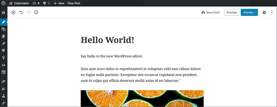 Beginners guide to Gutenberg and the new WordPress editor.