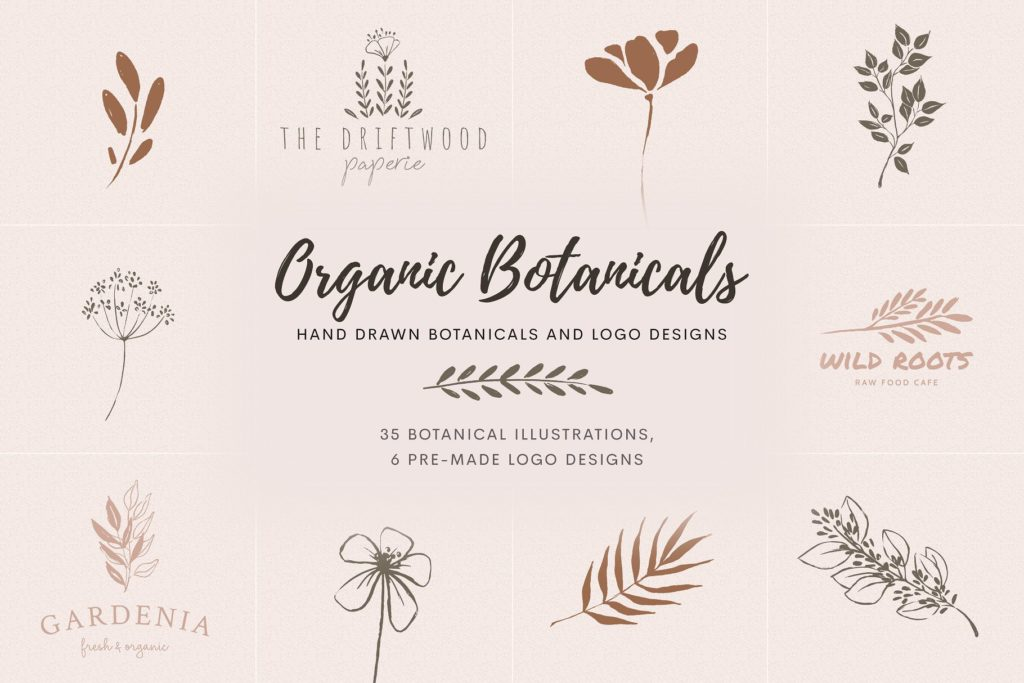 Elegant, inky, organic botanical illustrations and logo templates.
